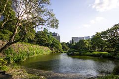 Small lake in hibiya park. Summer scenery along a small lake in hibiya park in tokyo, japan stock photography