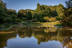 A small Lake within a integral nature reserve Royalty Free Stock Images