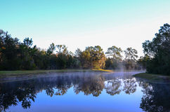 Small lake and morning fog Stock Image