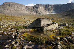 Small lake with moss in the mountains Stock Photography