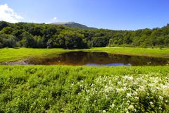 Small lake in mountains and the blue sky. Stock Image