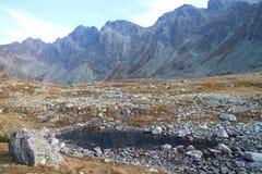Small lake near Veľké Hincovo pleso lake under Kôprovský štít peak in Mengusovska dolina valley, High Tatras. Slovakia stock image