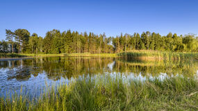 Small Lake On Golf Course Stock Photography