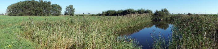 Small lake and pasture Stock Images