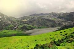 Small lake in the Picos de Europa mountains. Stock Photo
