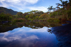 Small lake in rainforest with sky reflection Stock Photography
