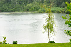 Small lake in a rainy day Royalty Free Stock Photo