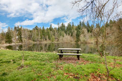 Small lake Rasmussen, Duval. WA state. USA Royalty Free Stock Images