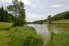 Small lake in southern Black Forest, Ofingen, Baden Stock Photo