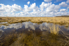 Small lake in steppe Royalty Free Stock Images