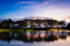 A small lake in summer at sunset. A small lake trees and clouds in summer at sunset Stock Images