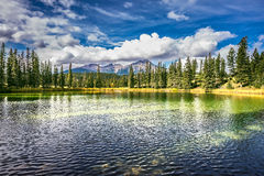 Small lake Royalty Free Stock Photo