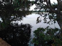 Small lake surrounded by trees . shade place dark surrounding royalty free stock images