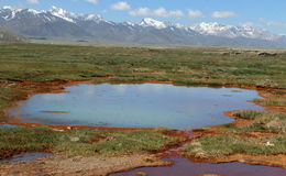 Small lake on a swamp with rust. Near the spring with high level of iron Royalty Free Stock Photos