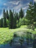 Small lake among trees Stock Photos