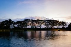 Small lake and trees in the evening at golden hour. With dark clouds Royalty Free Stock Images