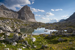 Small lake at Triglav Lakes Valley. With grass and flowers in the foreground, lake in the middle and mountain peak in the background Stock Photos
