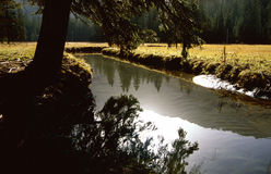 Small lake in upland moor Stock Photography