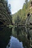 Small lake between woods Stock Photo