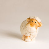 Small lamb. Cute small lamb on the white background Stock Image