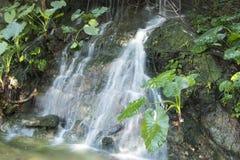 Running water stock photography
