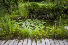 Small landscaping pond Royalty Free Stock Photos