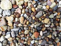Small landscaping rocks in a garden Stock Image