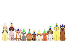 Small and large dogs border set. With colorful party hat Royalty Free Stock Photography