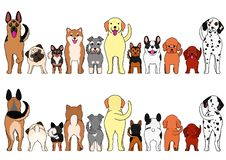 Small and large Dogs border set. From front view and rear view royalty free illustration