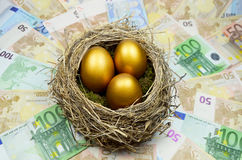 Golden nest egg. Golden eggs in a nest laying on a bed of money Royalty Free Stock Photography