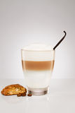 Small latte macchiato with a vanilla bean and a cookie. Small latte macchiato with a vanilla bean coffee beans  and a cantuccini cookie on gray background Stock Photo