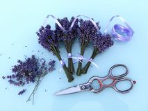 Small lavender bouquets bind and dry. Many small lavender bouquets bind and dry royalty free stock images