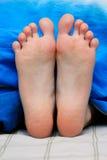Small legs. Female legs under a blanket stock photos