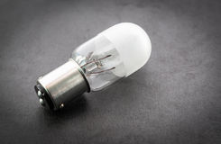 Small light bulb. Stock Photography