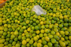 Small limes Royalty Free Stock Image
