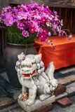 Lion-dog Sculpture guarding a home in Gion district, Kyoto. Small lion-dog stone statue in front of a large vase with flowers. Lion-dogs or Komainu are the royalty free stock image