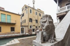 Lion sculpture on stairs. Small lion sculpture on stone handrails in Venice, Italy stock images
