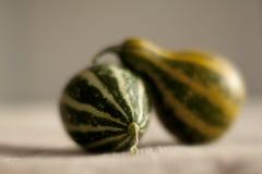 Small litle pumpkins Royalty Free Stock Photos