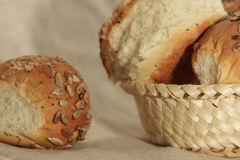 Small loafs Stock Images