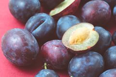 Finnish plum variety called Sinikka. Small local finnish plums variety called Sinikka- one half plum is on top of others to expose the pulp and seed, purple Stock Photography