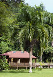 Small lodge among  green grass and palm trees Royalty Free Stock Photo