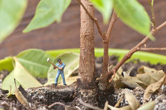 Small lumberjack cuts potted plant. Garden concept Royalty Free Stock Photos