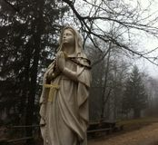Small madonna statue on Ucka. Mountain in the forest Stock Images