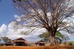 Small malagasy village Royalty Free Stock Photos