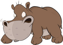 Small and malicious hippopotamus .Cartoon Stock Photo