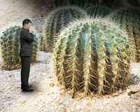 Small man looking at big cactus Royalty Free Stock Images