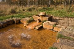 Small stone fountain in woods. royalty free stock photo