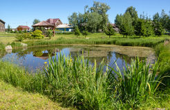Small man-made pond on a summer day Royalty Free Stock Photos