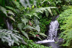 Small man-made waterfall Royalty Free Stock Photo