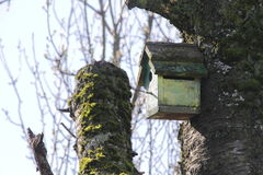 Small Man Made Wood Birdhouse Stock Photo
